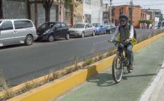 Darán a conocer red de carriles para bicicleta en capital